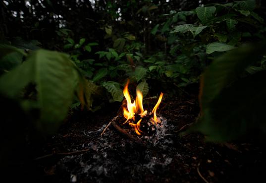 kapan manusia purba mulai mengenal api